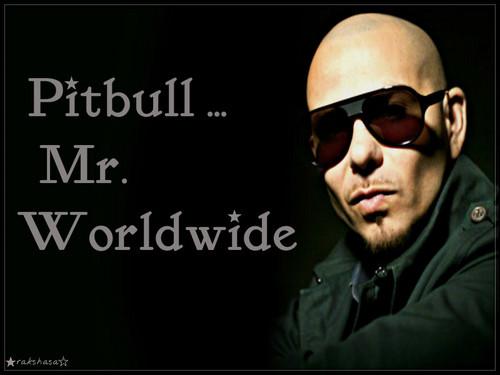 ★ Pitbull ☆