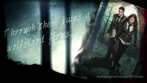 'Wolfblood'
