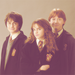 нαяяу - harry-james-potter icon