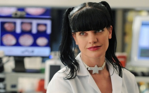 Abby Sciuto fond d'écran containing a portrait called Abby Sciuto