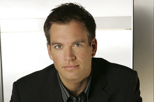 Michael Weatherly wallpaper probably containing a portrait called Anthony Dinozzo