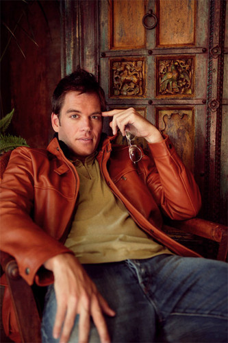 Michael Weatherly wallpaper possibly with a drawing room, a street, and a hood titled Anthony Dinozzo