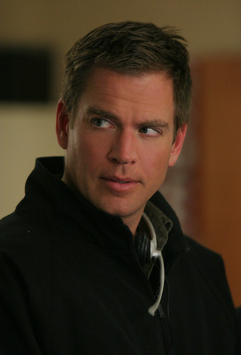 Michael Weatherly wallpaper probably containing a portrait entitled Anthony Dinozzo
