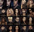 BD 2 vampires