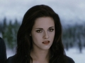 BD - twilight-series photo