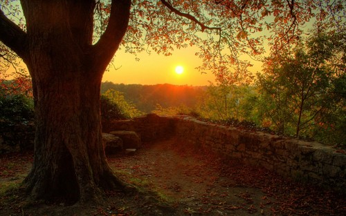 Beautiful Autumn Sunset