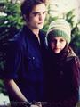 Bella & Edward - twilight-series photo