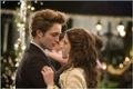 Bellaq & Edward - twilight-series photo