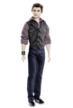 Breaking dawn dolls - twilight-series photo