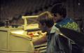 Brian & Dennis Wilson