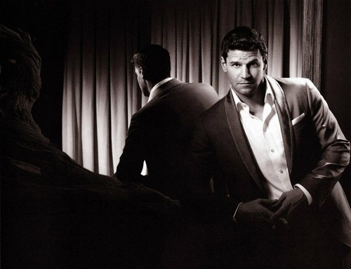David Boreanaz wallpaper containing a business suit titled David Boreanaz
