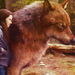 Eclipse - jacob-and-bella icon