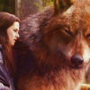 Jacob and Bella photo called Eclipse
