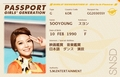 Girls' Generation passports for