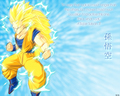 Goku ssj3 - dragon-ball-z wallpaper