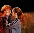 Hermione Granger - hermione-granger photo