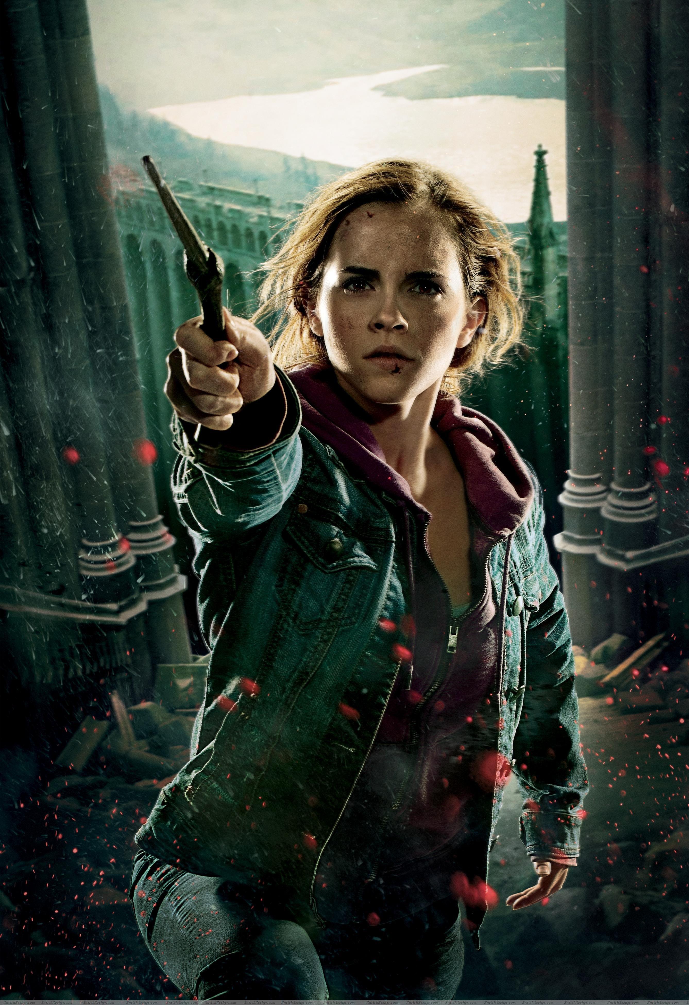Hermione granger hermione granger