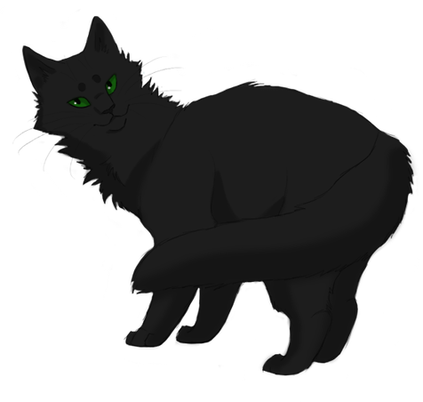 Forever Warriors Cats Images Hollyleaf Wallpaper And Background Photos