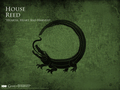 House Reed - game-of-thrones wallpaper