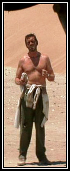 Hugh Laurie- Flight of the Phoenix, 2004