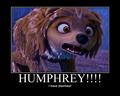 Humphrey!!!