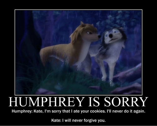 Humphrey is sorry