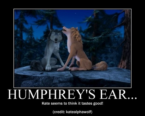 Humphrey's ear