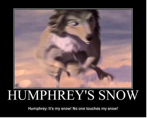 Humphrey's snow