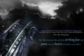 Hush Hush Wallpaper - hush-hush photo