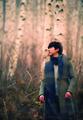 LSG Mini Album Forest