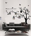 Memory of Tree Covered Photo Frame Wall Sticker - home-decorating photo