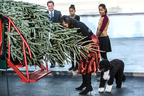 Michelle And Her Family Receiving The Christmas arbre
