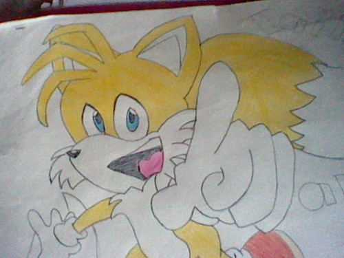My Tails drawing