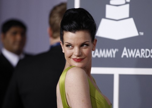 Pauley Perrette wallpaper possibly with a portrait titled Pauley Perrette