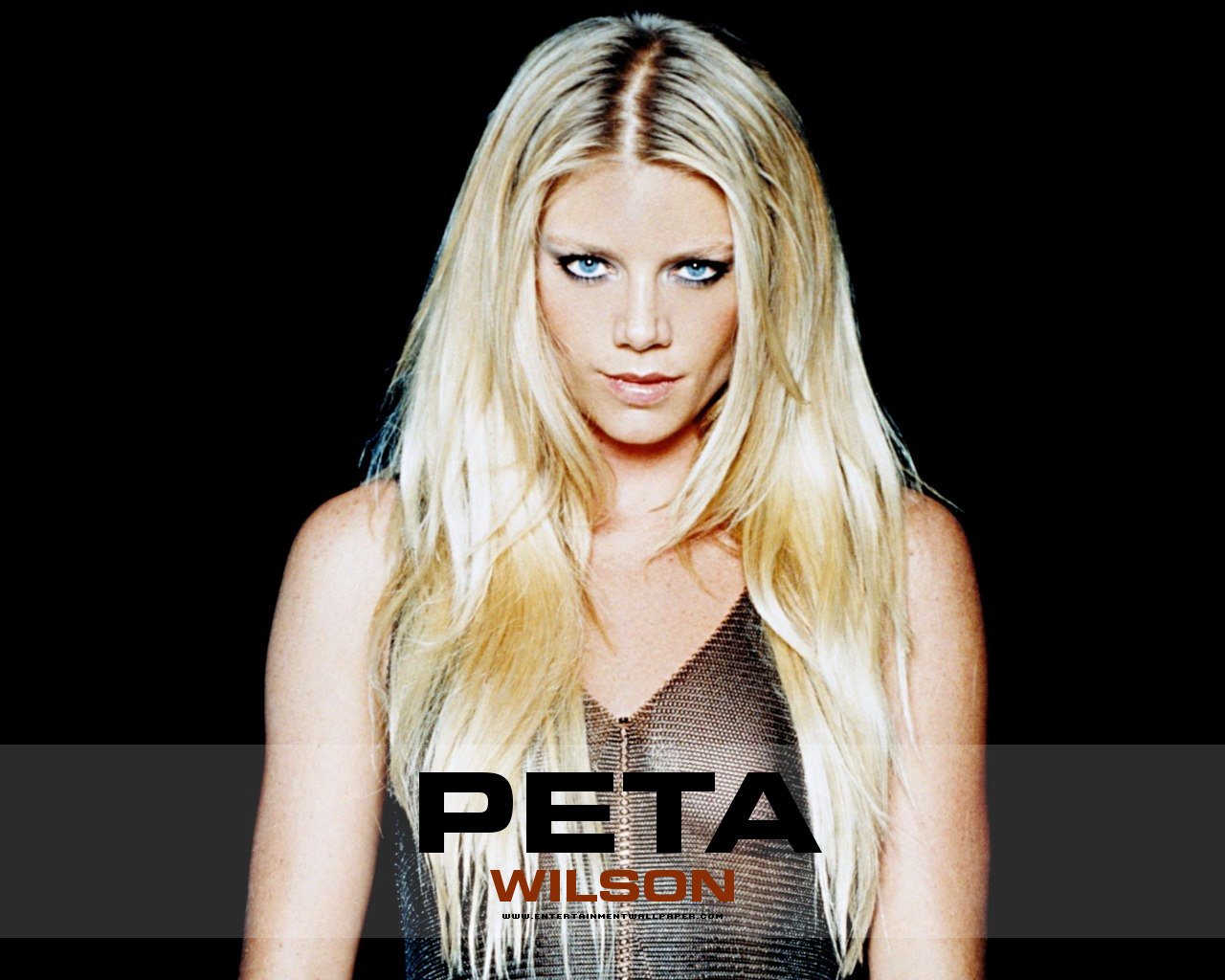 peta The world's most comprehensive professionally edited abbreviations and acronyms database all trademarks/service marks referenced on this site are properties of their respective owners.