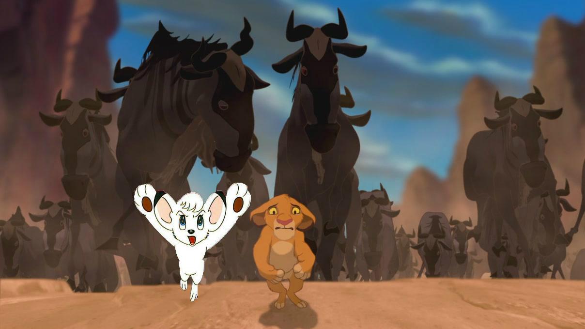 Stampede Kimba And Simba Fan Art 32864176 Fanpop