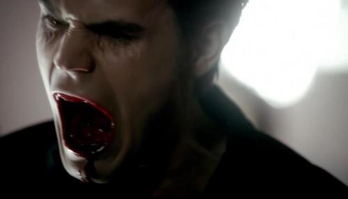 el diario de los vampiros fondo de pantalla entitled Stefan Salvatore