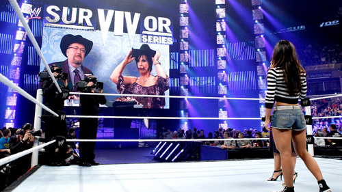 Survivor Series Digitals 11/18/12