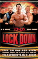 TNA Lockdown 2005