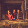 The Golden Trio - harry-ron-and-hermione photo