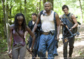 The Walking Dead Season 3 Episode 7 - the-walking-dead photo