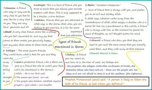 Types of دوستوں mentioned in Quran