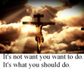WANT and SHOULD - christianity photo