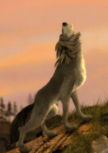 a serigala