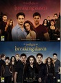 breaking dawn part 1 and 2 - twilight-series photo