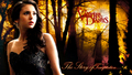 the-vampire-diaries - elena wallpaper