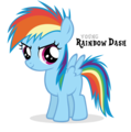 filly rainbow dash - rainbow-dash photo