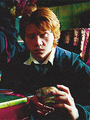 ron - ronald-weasley photo