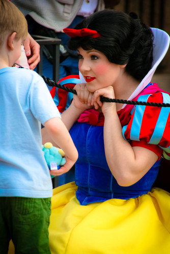 Snow White and the Seven Dwarfs wallpaper entitled snow white