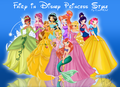 winx disney princess - the-winx-club photo